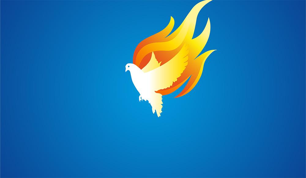 Pentecost Dove on a blue background